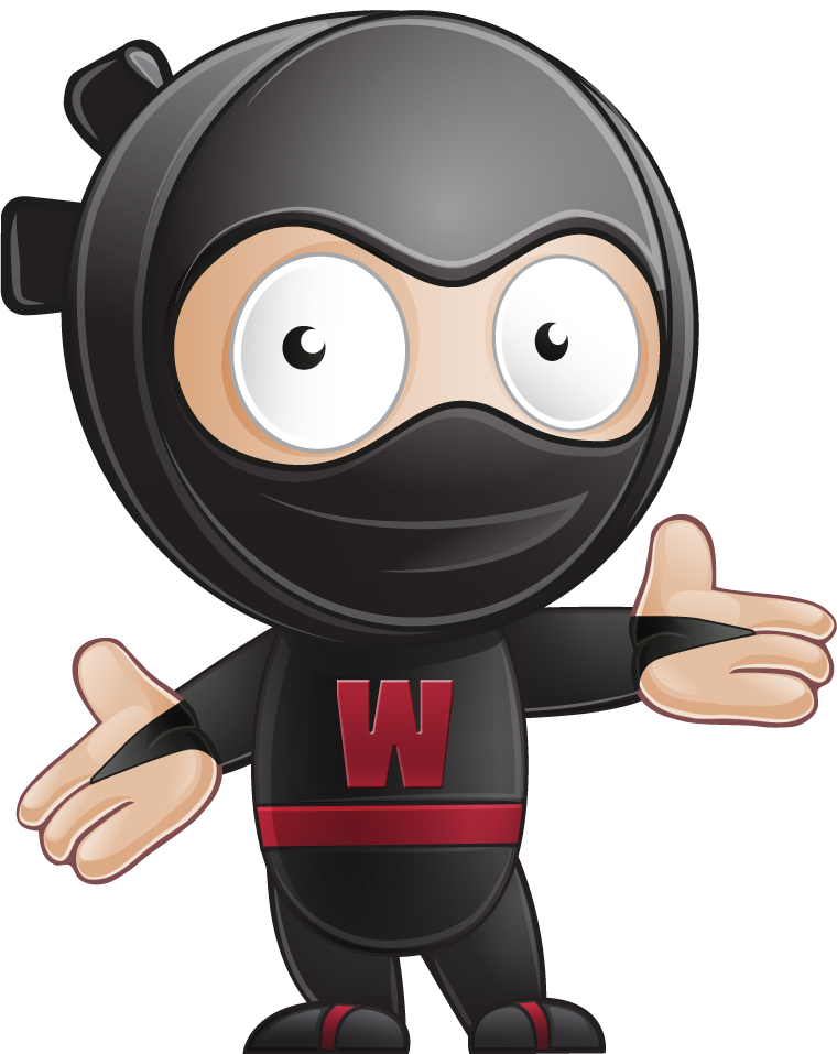 web design ninja welcome